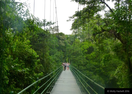 The bridge to the study centre at La Selva Biological Research Station, Costa Rica